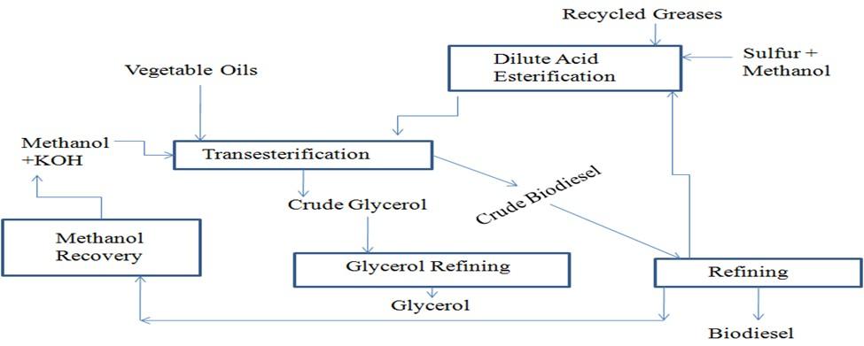Transesterification process Block Diagram