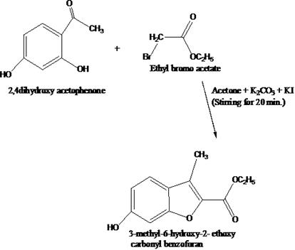 Reaction of reparation of 3-methyl-6-hydroxy-2-ethoxy carbonyl benzofuran